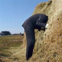 Find A Needle In A Haystack – Facebook Mischief